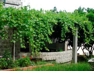 Casa di Oliveto apartment 1/3 nr.1, Petrovac