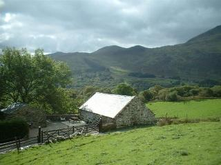 Ty Hebog Self catering cottage for 2, Beddgelert