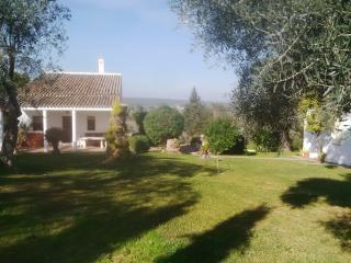 Chalet con piscina en Aznalcázara 30 Km de Sevilla