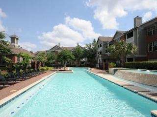 Medical center lovely Apartment 1213, Houston