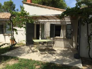 Beautiful Villa under the Pins, Fontvieille