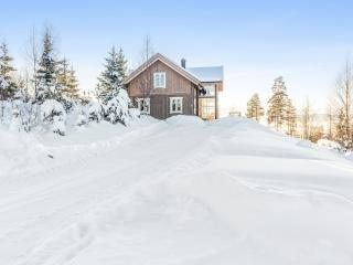 Mountain Villa With Great View - 1 hour from Oslo, Stange Municipality