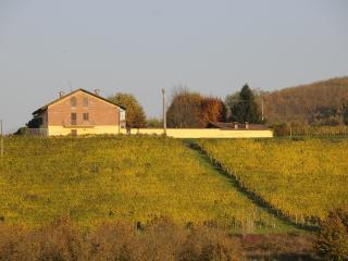 Casa tra le vigne con piscina
