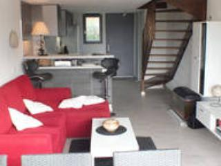 appartement duplex en camargue, vacation rental in Arles