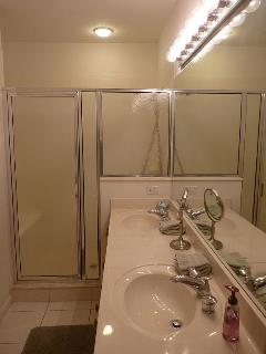 Master Shower Area