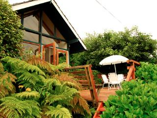 Beautiful house in Pucon next to the lake