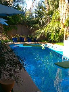 Lush private pool setting behind house...grab a floatie and hop in!