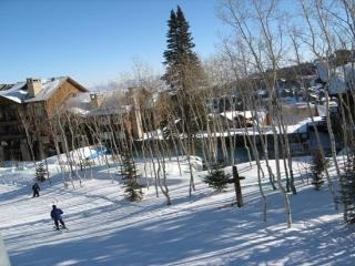 Luxury Top Rated Ski-in/Ski-Out in Deer Valley