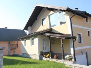 Villa House Apartment accomodation Ilidža Sarajevo, Hadzici
