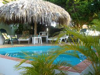 Pool with loungers a under tiki hut
