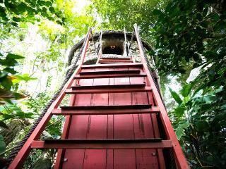 Cosy Tree House B&B w/ Aircon-15' fr Hanoi Centre