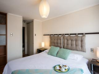Best Apartment in Lastarria, Santiago