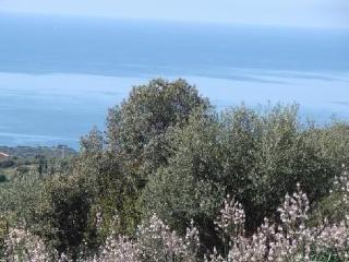 villa climatisée dans le  golfe du valinco, Serra-di-Ferro