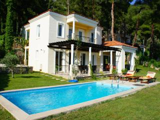 Private Villa with swimming pool by the forest, Gocek