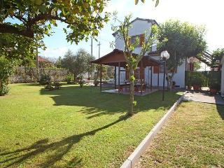 Montignoso - 577001