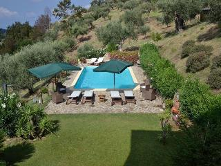 Villa Oliva, among trees, private pool and spa