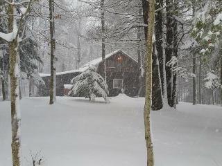 Adirondack Log Cabin getaway