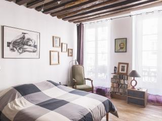 Very large modern artist flat for 6 - Bastille