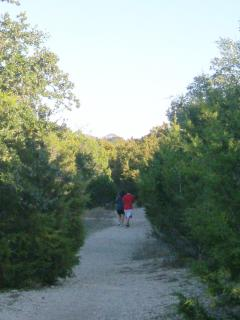 Enjoy Hiking and Running Trails Through Neighborhood Greenbelt.