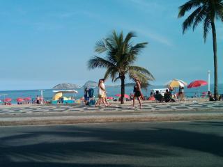 Sunny, Beach Central 2 br home Ipanema Copacabana, Rio de Janeiro