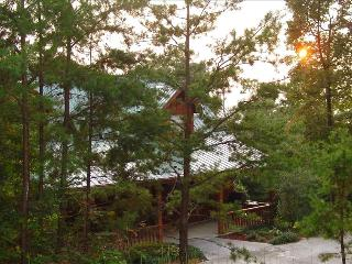Papabear Mountain Lodge, Gatlinburg