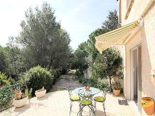 Beaucaire Gard, apartment 5p. comfort, big garden, pool,