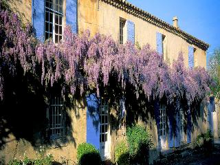 Paradou Bouches-du-Rhône, Luxury property 19p. 1 landhouse and 1 Villa, 2 privat pools