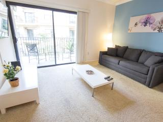 LA Luxury Two Bedroom Apartment, Pool and Gym 2K, Los Angeles