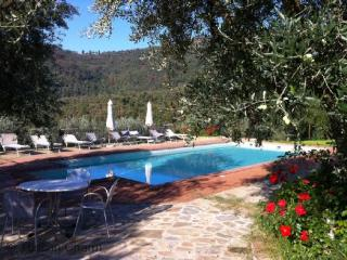 Villa Margarita - Garden Apartment - Garden Apartment of Villa - or as a Tuscan  Villa Complete, Castiglion Fiorentino