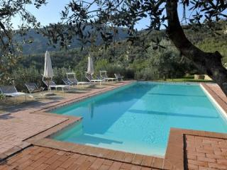 Villa Margarita -  Large Apartment - Tuscan Villa  with pool and privacy, Castiglion Fiorentino