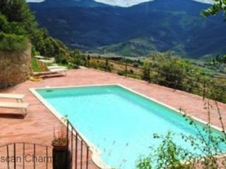 Villa Castalini - - Large Tuscan Family Villa, Private Pool, Volleyball and views, Castiglion Fiorentino