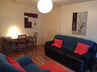 Central Apartment to the rear with garden & WiFi, Dublín