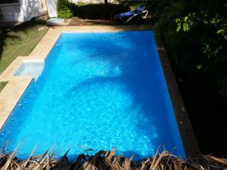 Villa with huge pool 2 blocks from beach, 4 bdrms