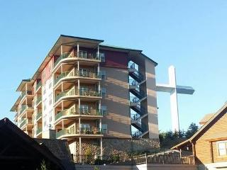 Luxury condo just off the Parkway!!, Pigeon Forge