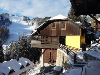 Apartment Celeia - Golte (ski, hike, bike)