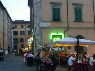 3 BEDROOMS APT NEAR THE PISA TOWER - FIRST FLOOR