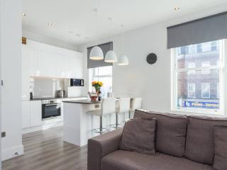 Generous Spaces Apartments - modern 2 bed, London