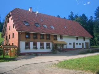 Schwyzerhof Wohnung Sternblick, Todtmoos