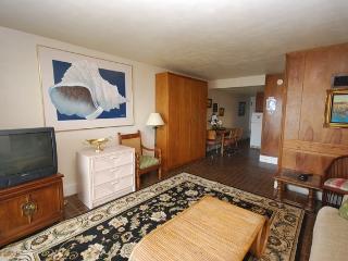 Edgewater House 517