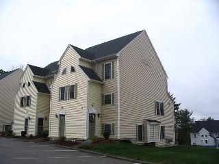 Gorgeous condo on Lake Winnipesaukee, Weirs Beach
