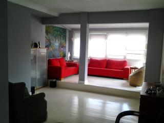 luminoso apartamento loft en bilbao