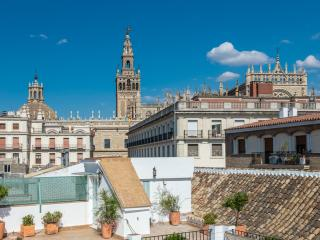 Unique duplex with terrace & views of cathedral, Seville