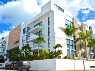 Spacious penthouse 403-S 20th ave with 14th st, Playa del Carmen