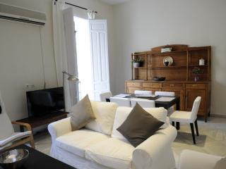 HUDGE 3 BEDROOMS APARTMENT IN THE CENTER OF CITY, Seville