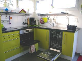 cuisine avec lave vaisselle ,four multifonctions,plaque de cuisson à induction, bouilloire etc.....
