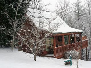 Lovely Log Cabin! *Smoky Mountain Nat'l Park Views!* Great Gatlinburg Location!