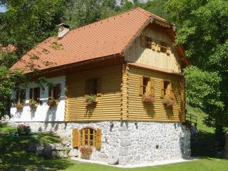 Holiday house Sobol, Delnice