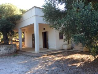 Ostuni - villa immersa in ulivi secolari