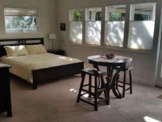 Private, cozy, in-law studio, San Rafael