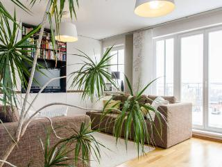 2BR aptmt / 25sqm terrace and breathtaking views, Prague